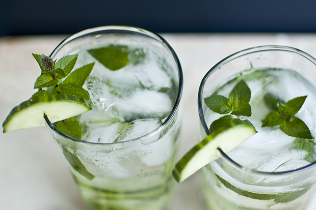 Cucumber Gin Fizz Recipe — Dishmaps